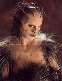 Nightbreed Shuna Sassi
